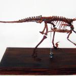 deinoncyhus sculptures